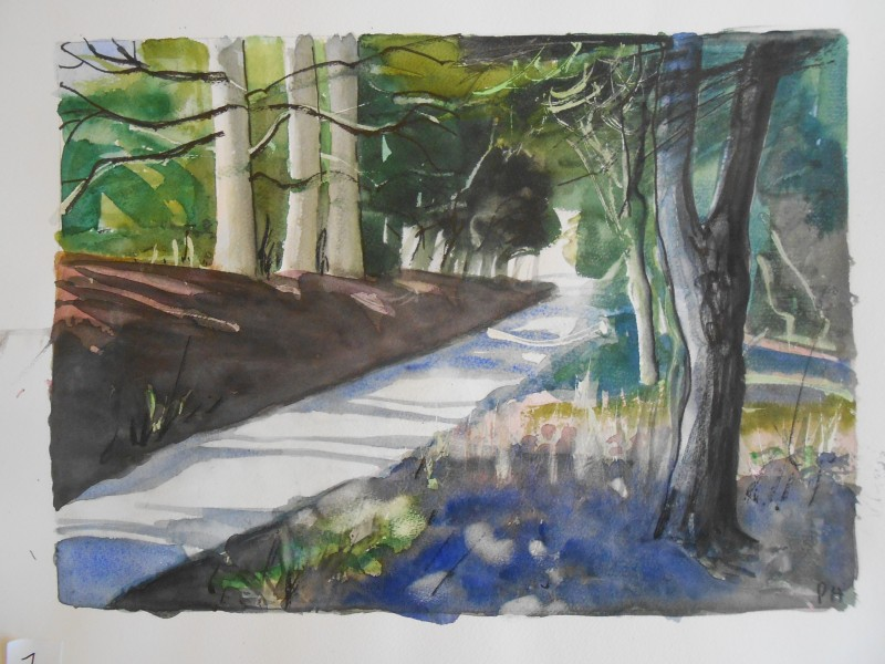 Lane 3