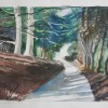 The lane to Fawley Bottom